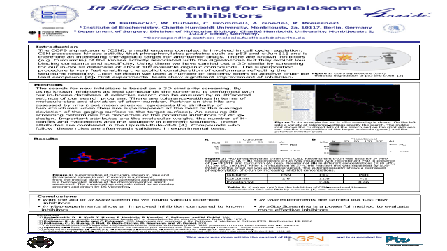 In silico Screening for Signalosome Inhibitors