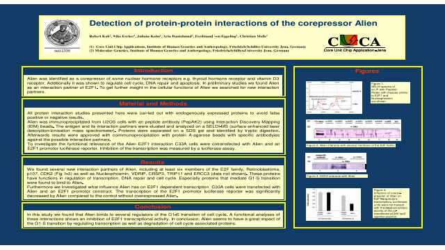 Detection of Protein-Protein Interactions of the Corepressor Alien