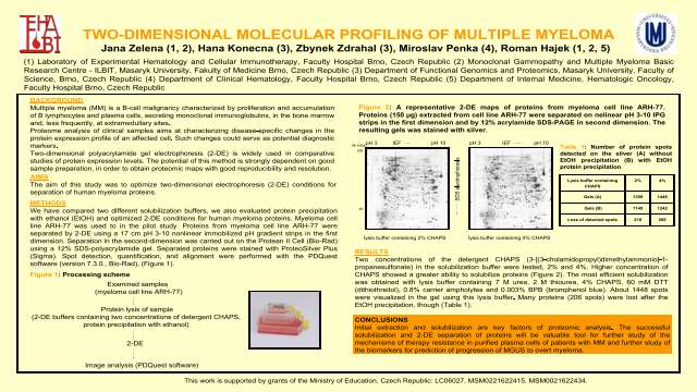 Two-Dimensional Molecular Profiling of Multiple Myeloma