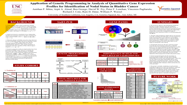 Application of genetic programming in analysis of quantitative gene expression profiles for identification of nodal status in bladder cancer