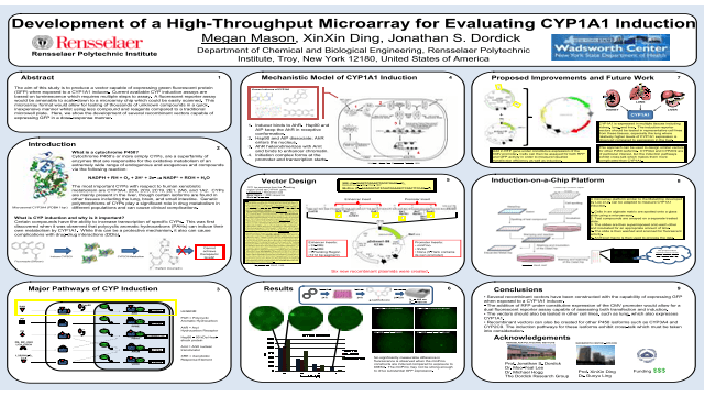 Development of a High-Throughput Microarray for Evaluating CYP1A1 Induction