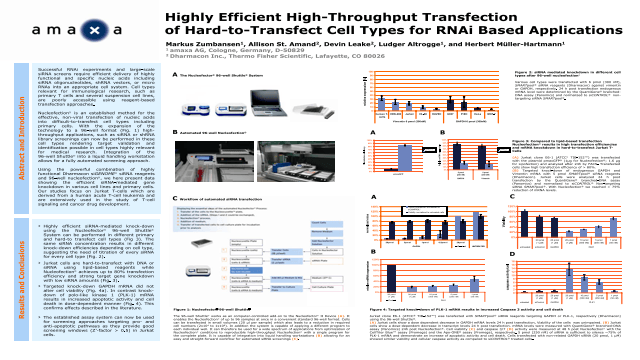 Highly Efficient High-Throughput Transfection