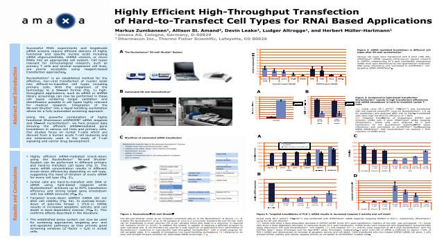 Highly Efficient High-Throughput Transfection