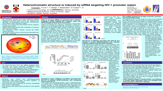 Heterochromatin structure is induced by siRNA targeting HIV-1 promoter region
