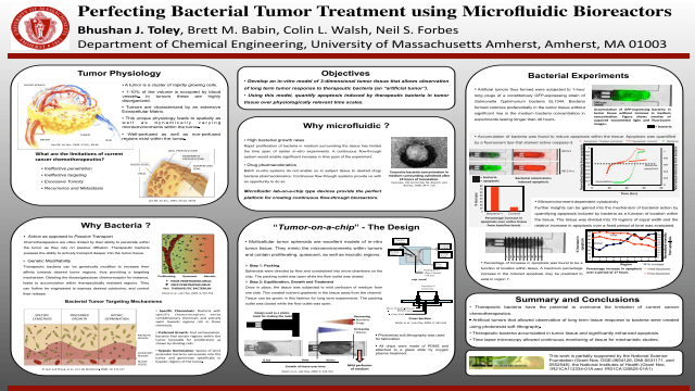 Perfecting Bacterial Tumor Treatment using Microfluidic Bioreactors