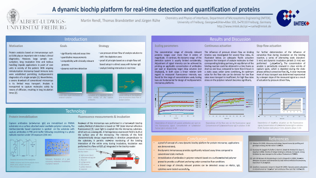 A novel dynamic biochip platform for real-time detection and quantification of proteins