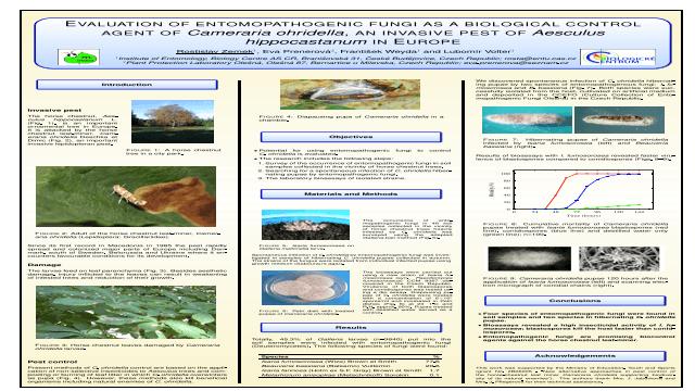 Evaluation of entomopathogenic fungi as a biological control agent of Cameraria ohridella, an invasive pest of Aesculus hippocastanum in Europe.