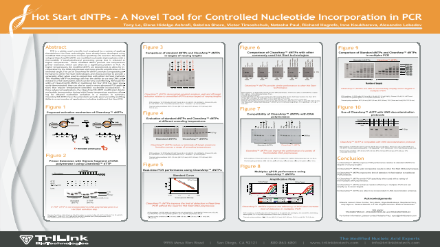 Hot Start dNTPs - A Novel Tool for Controlled Nucleotide Incorporation in PCR