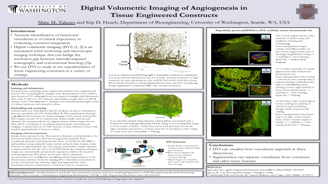 Digital Volumetric Imaging of Angiogenesis in  Tissue Engineered Constructs