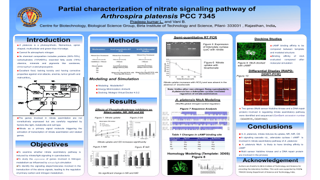 Partial characterization of nitrate signaling pathway of  Arthrospira platensis PCC 7345