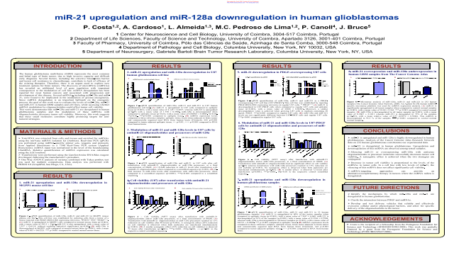 miR-21 upregulation and miR-128a downregulation in human glioblastomas