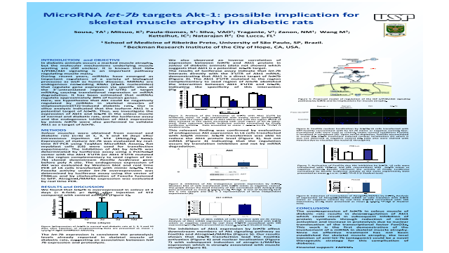 MicroRNA let-7b targets Akt-1: possible implication for skeletal muscle atrophy in diabetic rats