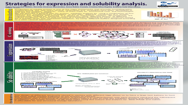 Strategies for expression and solubility analysis