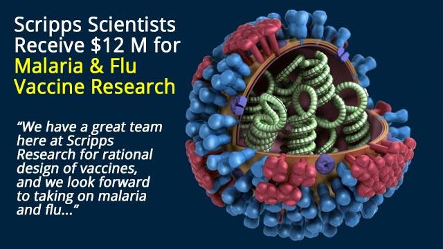 $12 M Grant Supports Flu and Malaria Vaccine Development