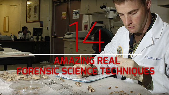14 Amazing Forensic Science Techniques