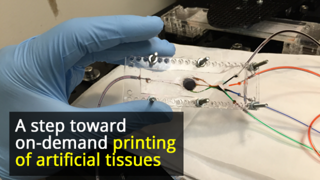 3D Printer Developed That Can Create Complex Biological Tissues