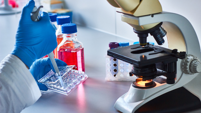 6 Tips for Successful Transfection