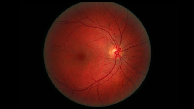 9 Things We Didn't Know Last Week - 28 July 2017