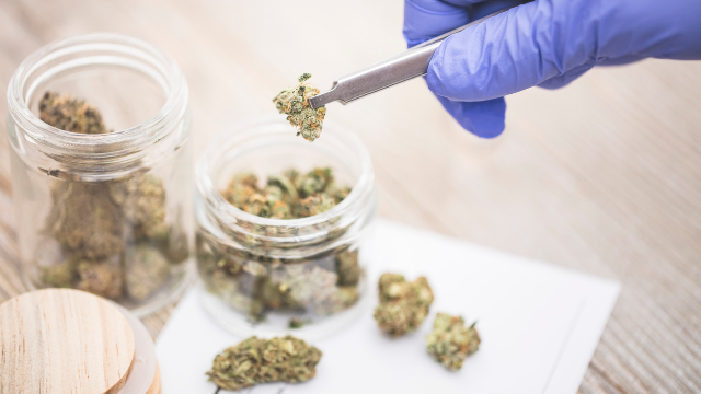 9 Tips to Help Cannabis Testing Labs Prepare for ISO 17025 Accreditation