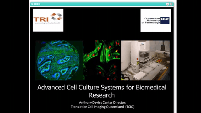 Advanced Cell Culture Systems