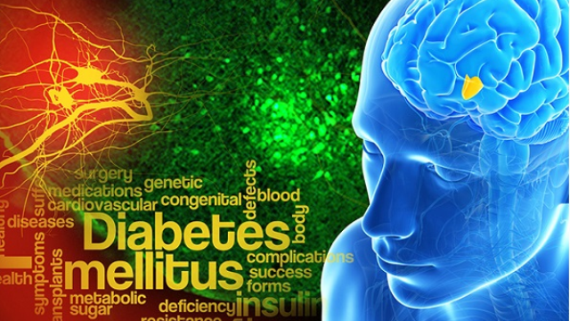 Glucose 'control switch' in the brain key to both types of diabetes
