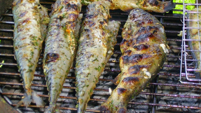 Weekly consumption of baked or broiled fish, regardless of omega-3 levels, boosts brain health