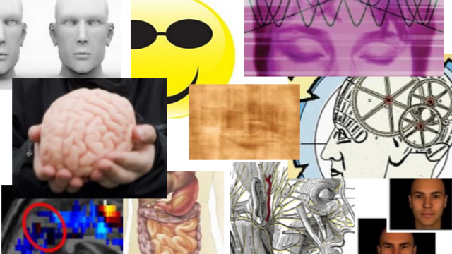 Top 10 NeuroScientistNews Stories of 2014