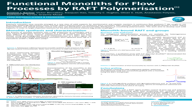 Functional Monoliths for Flow Processes by RAFT Polymerisation