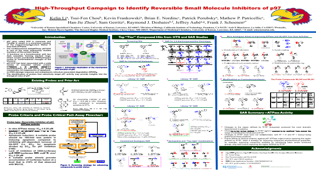 High-Throughput Campaign to Identify Reversible Small Molecule Inhibitors of p97