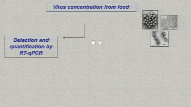 Innovative Methods to Detect Viruses in Food