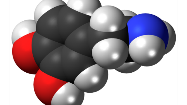 Boost for dopamine packaging protects brain in Parkinson's model
