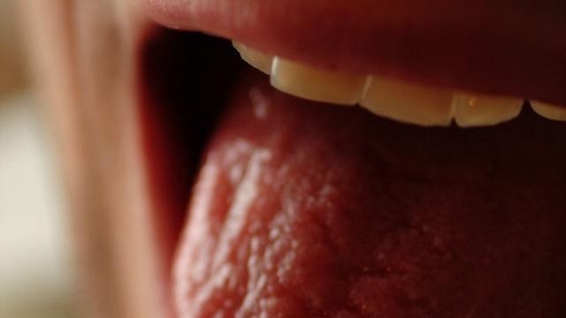 Stress hormone receptors localized in sweet taste cells