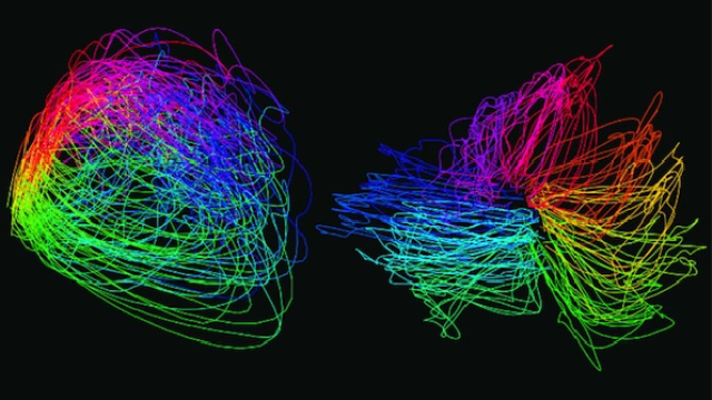 New tools help neuroscientists analyze big data