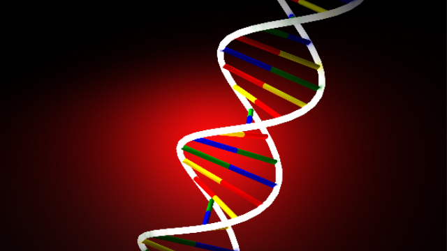 Changes in a single gene's action can control addiction- and depression-related behaviors