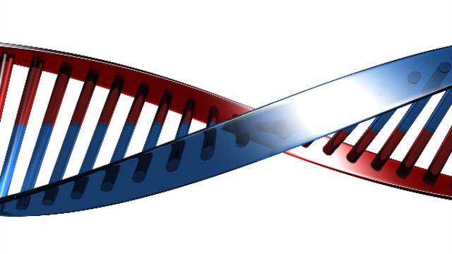 Genotype found in 30 percent of ALS patients speeds up disease progression