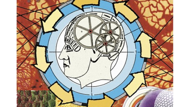 A new test measures analytical thinking linked to depression, fueling the idea that depression may be a form of adaptation