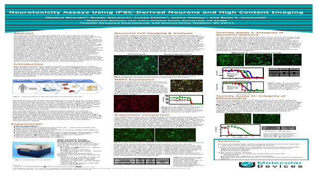 Neurotoxicity Assays Using iPSC-Derived Neurons and High Content Imaging