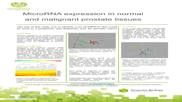 MicroRNA expression in normal and malignant prostate tissues