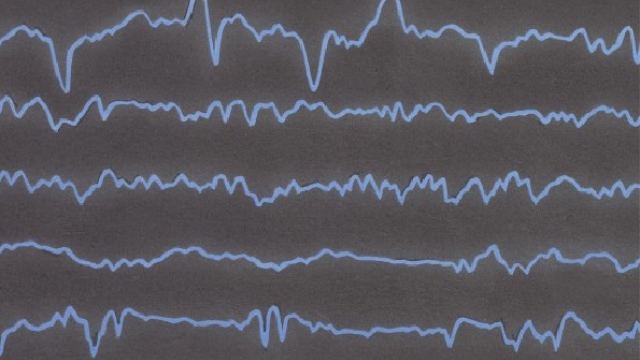 EEG study findings reveal how fear is processed in the brain