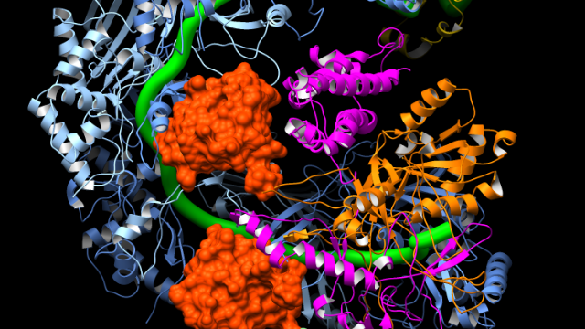 A Molecular On/Off Switch for CRISPR