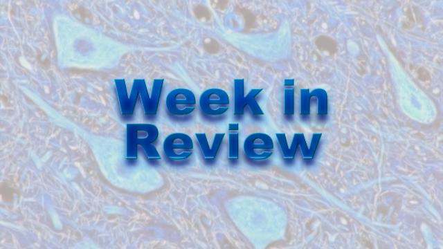 This Week on NeuroScientistNews: 30 November-4 December
