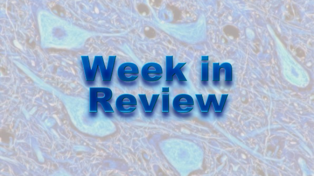 This Week on NeuroScientistNews: 31 August – 4 September