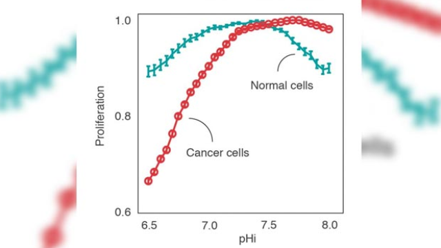 Acidic pH: A Cancer Cell's Weakness