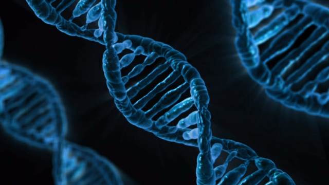 ACMG Issues Statement on Genome Editing in Clinical Genetics