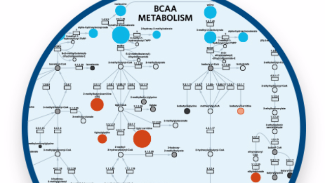 Overcoming Challenges of Metabolomics