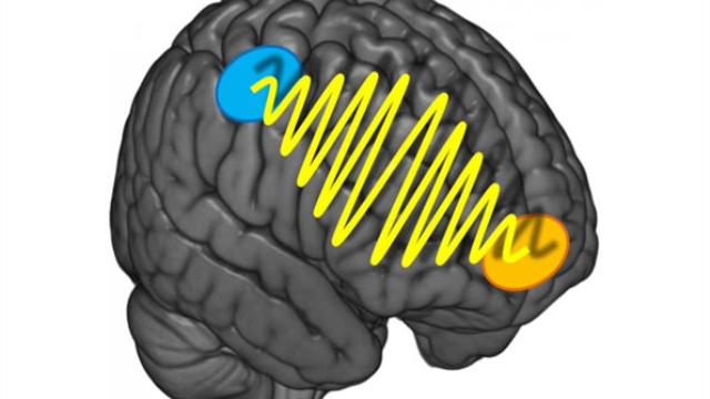 Brain waves behind indecisiveness revealed