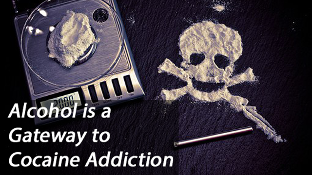 Alcohol is Gateway Drug to Compulsive Cocaine Use