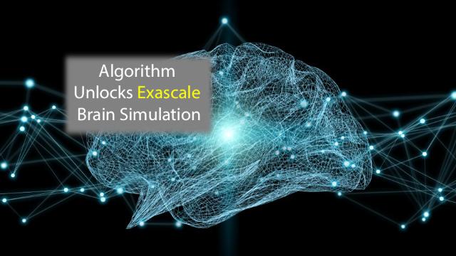 Algorithm Unlocks Exascale Brain Simulation