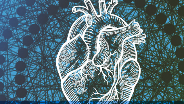 Algorithm Predicts Life Expectancy After Heart Attack