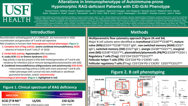 Alterations in Immunophenotype of Autoimmune-prone Hypomorphic RAG-deficient Patients with CID-G/AI Phenotype